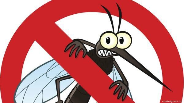 Szúnyogirtás Érmihályfalván!